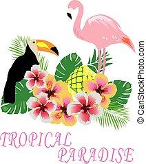 Toucan - vector flamingos toucan