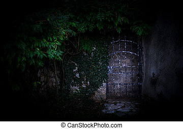 Door in the wall covered with green ivy