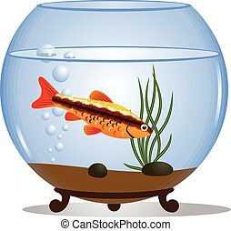 Fish in a round aquarium - Vector illustration of a fishbowl...