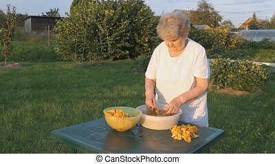 Woman 80s cleans chanterelle mushrooms in bowl - Aged woman...