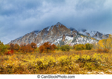 Fall Color and Snow in Colorado - Mountainside shrouded in...