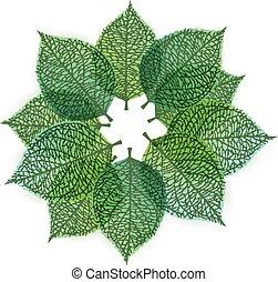 estilizado, hojas, verde, Plano de fondo