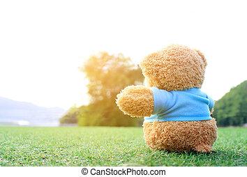 suave, sobre, sueño, amor, Sentado, luz, alguien, teddy,...
