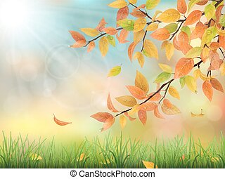 Autumn leaves grass and drops - Realistic vector nature...