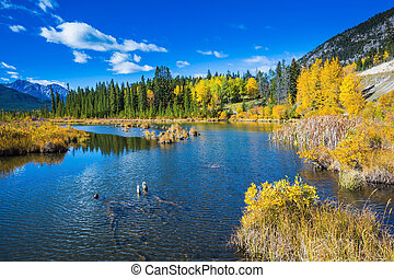 Lake Vermilion among the forests. Indian summer in the Rocky...