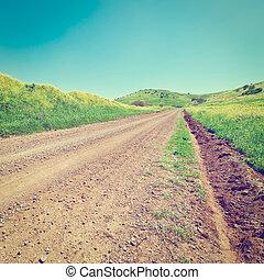 Golan Heights - Dirt Road between Green Fields of the Golan...