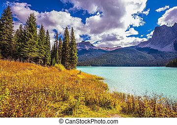 The eco-tourism - The concept of eco-tourism. Yoho National...