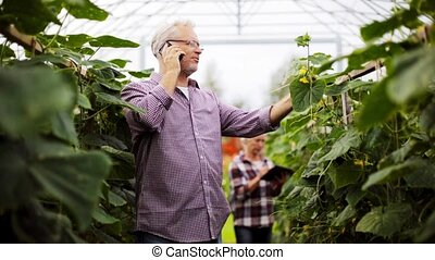 old man calling on smartphone in farm greenhouse - farming,...