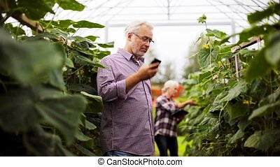 old man calling on smartphone in farm greenhouse