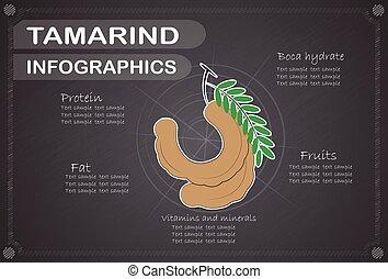 infographics, Tamarindo,  vector, Ilustración