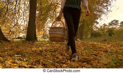 Brunette girl walking through autumn woods holding a picnic...