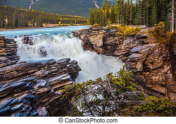 Athabasca waterfall in the forests - Canada, Jasper National...