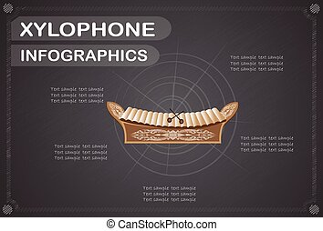 Xylophone  infographics, Vector illustration.