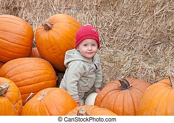Pumpkin Patch - The carving of pumpkins is associated with...