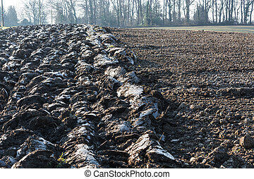 Freshly plowed field in Germany. - Freshly plowed field,...