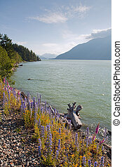 View of the Squamish River in British Columbia, Canada -...