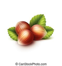 Full Unpeeled Hazelnuts with Leaves Isolated
