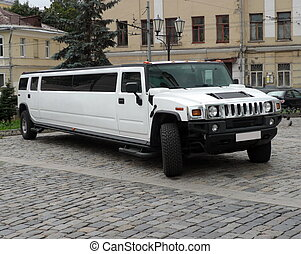 white wedding limousine at dry sunny day