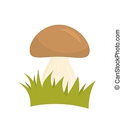 Porcini mushroom in grass. Vector illustration