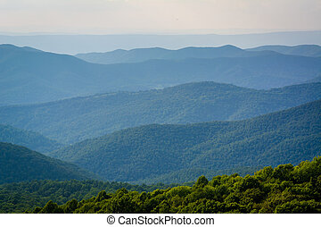 Layers of the Blue Ridge Mountains seen from Bearfence...