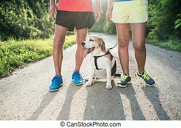 Unrecognizable senior runners with dog outside in sunny...