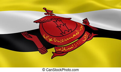 Bruneian flag in the wind. Part of a series.