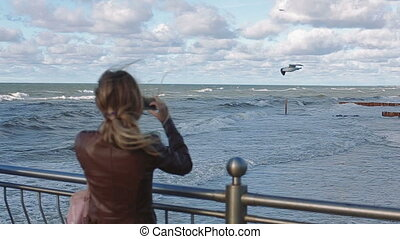 young woman Watching the seagulls on the sea