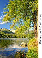 Mountain lake Strbske pleso in National Park High Tatra,...