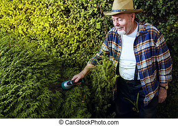 trimming garden plants - Senior man trimming garden plants....