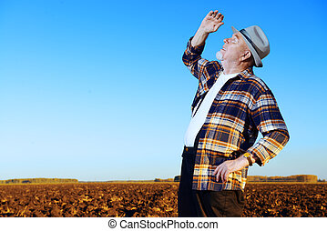 farmer in the field - An elderly farmer standing in a plowed...