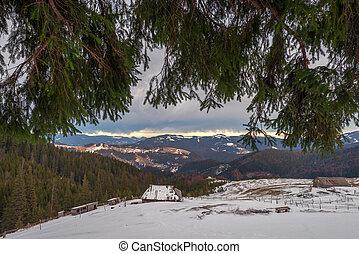 House - Fantastic landscape with snowy house Carpathians,...