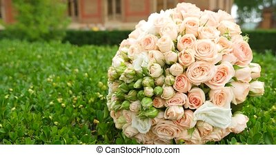 bouquet Roses Bunch on green