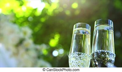 wine glasses on the grass with green background.