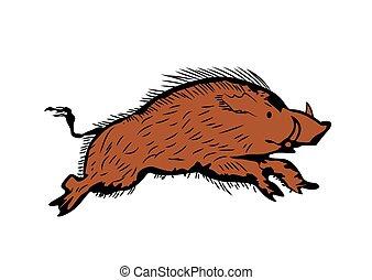 sketch of wild boar running, hand drawn illustration