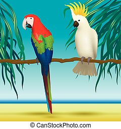 Parrots, Cockatoo, realistic birds sitting on branch  tropical background with beach and sea