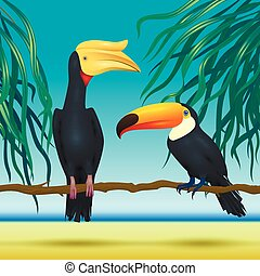 Toco toucan and rhinoceroc, bill, realistic birds sitting on branch  tropical background with beach  sea
