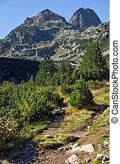 Malyovitsa peak, Rila Mountain - Landscape with Malyovitsa...