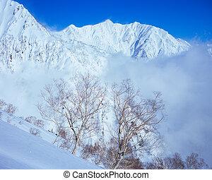 Winter season, Mt.Kashima yarigatake and Betula. -...