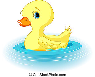 Swimming Duckling - Clip-art illustration of the swimming...