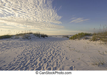 Footprints in the Sand Dunes Early Morning - Millions of...