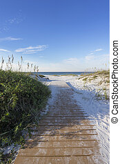 Early Morning Boardwalk to the Gulf of Mexico in Florida -...