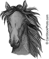 Black arabian horse head sketch - Black horse sketch....