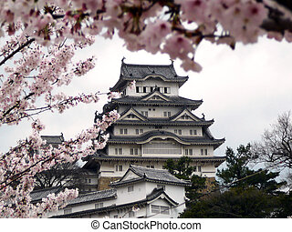 Japanese Castle during Cherry Blossom - Himeji Castle is...