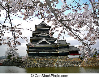 Matsumoto Castle with Cherry Blossoms - Beautiful Matsumoto...