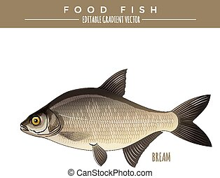 Bream. Food Fish - Bream illustration. Food fish, editable...