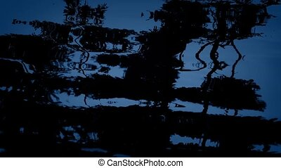 Forest Reflection In Water At Night - Trees reflecting in...