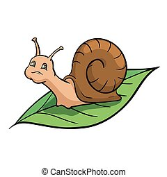 Snail crawling on the green leaf. Color vector illustration...