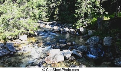 Flowing stream - Flowing clear mountain stream over rocks....