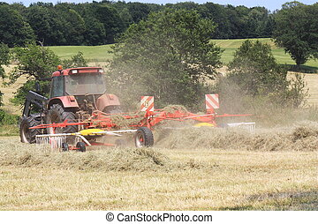 Raking Hay for Bales