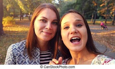 Two nice-looking cheerful girls making selfie photo in...